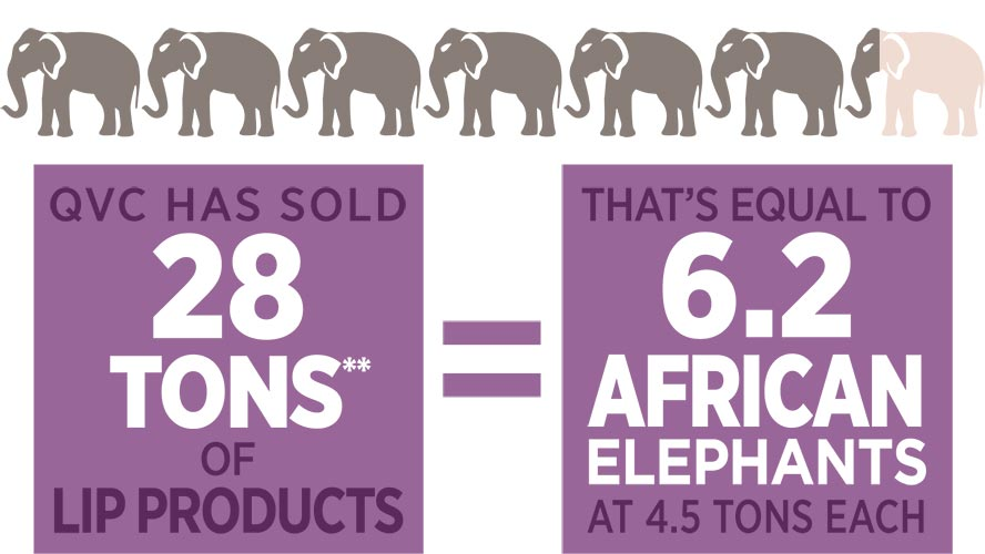 QVC has sold 28 tons** of lip products, that's equal to 6.2 african elephants at 4.5 tons each.